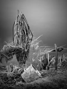 Discarded Bucket - Peter Delahar
