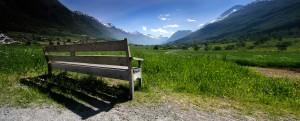 Olden bench - Paul Sherlock