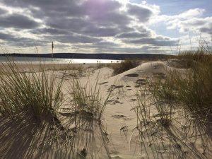 Studland Bay - Chloe Newman