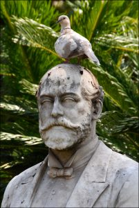 Birds on Heads_2_Chris Gibbins