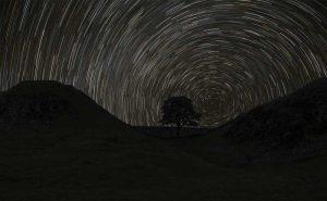 Sycamore Gap Northumberland - Dave Buckland