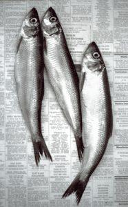 Fish Supper - Shelagh Roberts