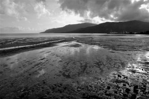 Low Tide at Cairns - Felicity Jenkins