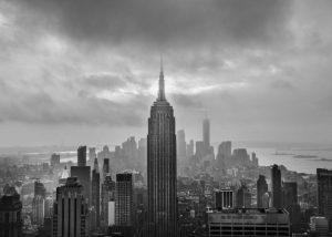New York - Stuart Carpenter